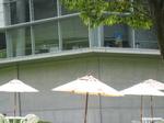 みやま深窓の麗人IMG_7127.JPG